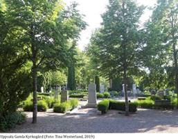 Begravningsplatsernas gröna kulturarv - historia, nuläge och framtid