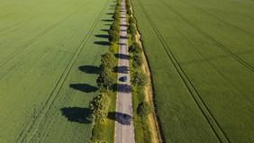 Hur bidrar elektrifiering och biodrivmedel till klimatneutralitet i transportsektorn?